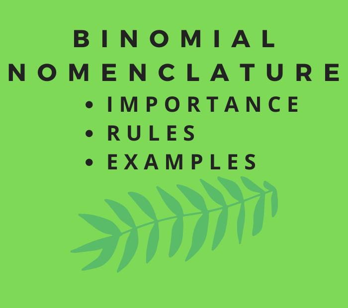 importance of binomial nomenclature